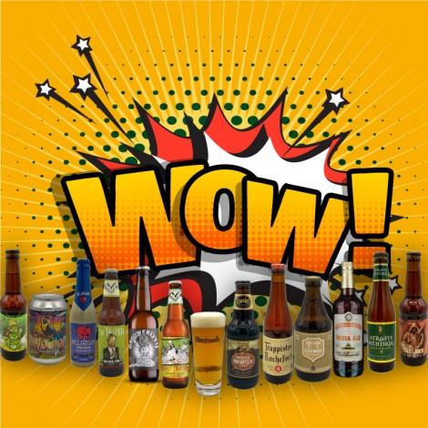 Pack Oferta Cerveza Artesana