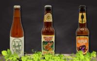 Tipos de cervezas IPA